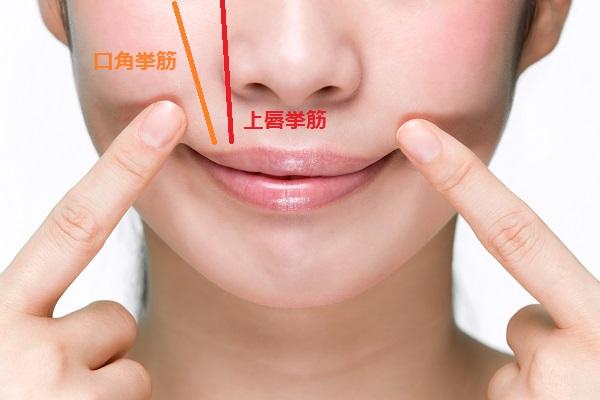 ボトックス注射によるガミー治療と表情筋